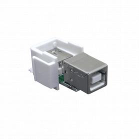 KUAB -Keystone A-B USB-USB A-AFUERA